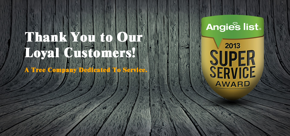 angies-list-super-service-award-slide
