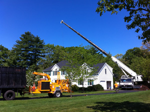 crane-service-tree-bucket-truck-norfolk-wrentham-franklin-ma