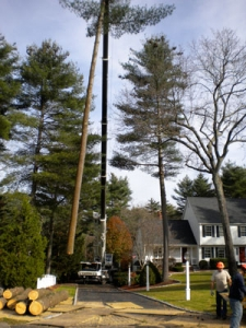 crane-services-bucket-truck-norfolk-wrentham-franklin-ma