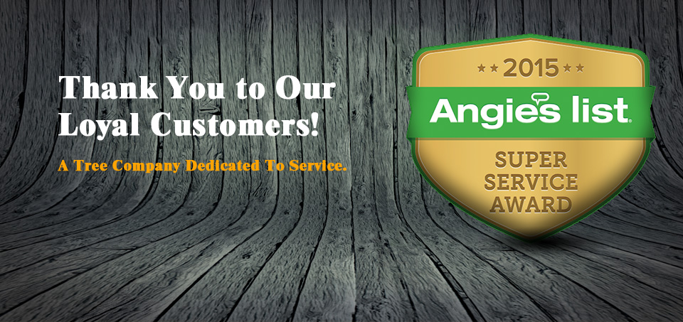 angies-list-super-service-award-slide-2015